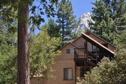 tahquitz-pines-cabin